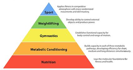 nutrition pyramid